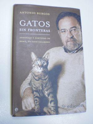 GATOS SIN FRONTERAS/ CATS WITHOUT BORDERS: ANDANZAS Y FORTUNAS DE REMO, UN GATO CALLEJERO/ ADVENTURES AND FORTUNE OF REMO, A STREET CAT