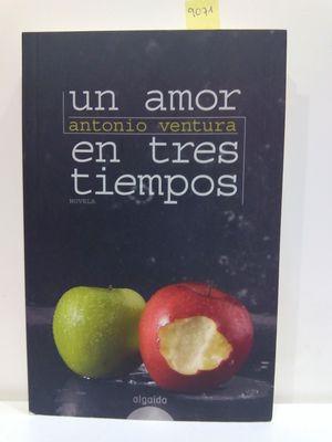 UN AMOR EN TRES TIEMPOS / A LOVE IN THREE DAYS (SPANISH EDITION)