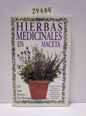 HIERBAS MEDICINALES EN MACETA