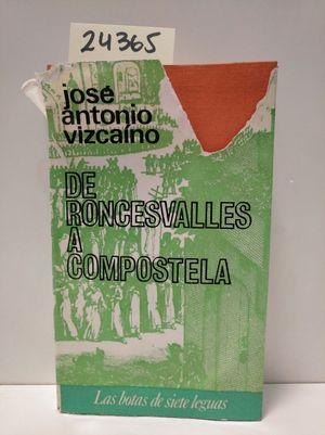 DE RONCESVALLES A COMPOSTELA